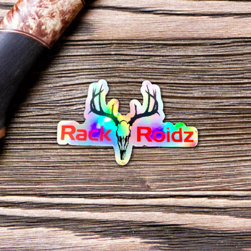 3 in diecut hologram logo sticker